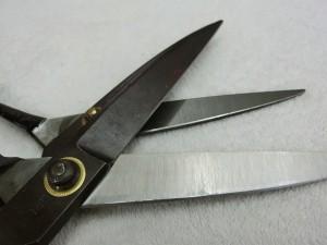 CIMG5586