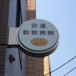 杉並区和田:動物病院の丸型袖看板の蛍光灯交換 参考価格15,000円