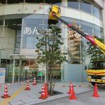 杉並区荻窪:移設に伴う公共施設の看板類の原状復旧作業