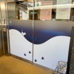 世田谷区南烏山:保育園のガラス面にシート貼り
